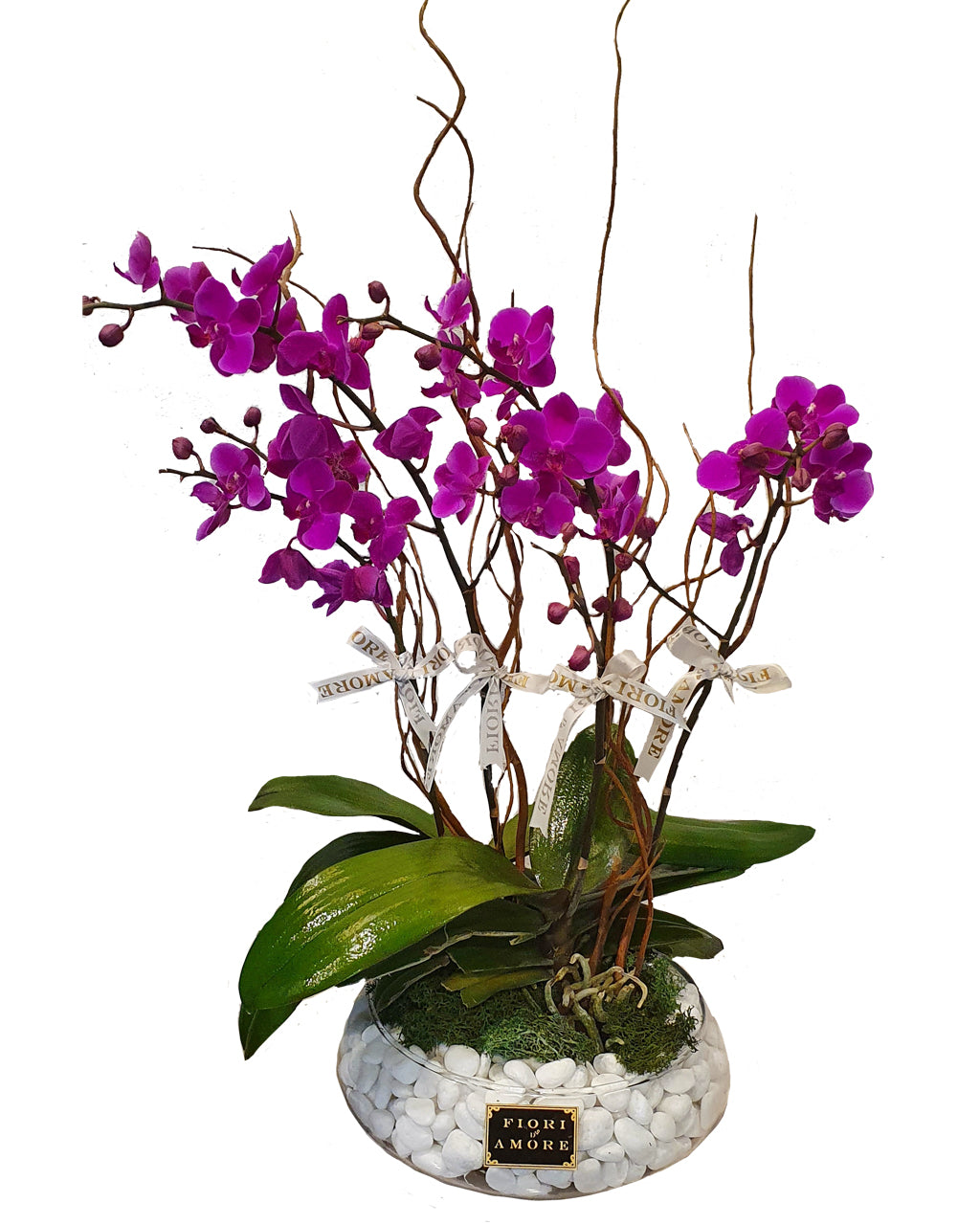 4 mini orchids in glass