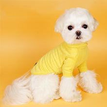 Load image into Gallery viewer, Fashion Small And Medium Pet Suit【Vest + Lining】