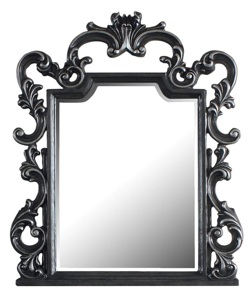 Acme Furniture House Delphine Mirror in Charcoal 28834 image