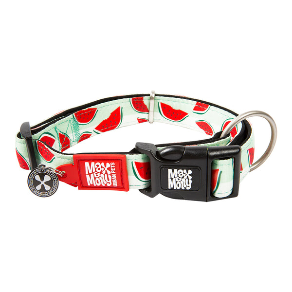 Max & Molly Smart ID Collar Watermelon
