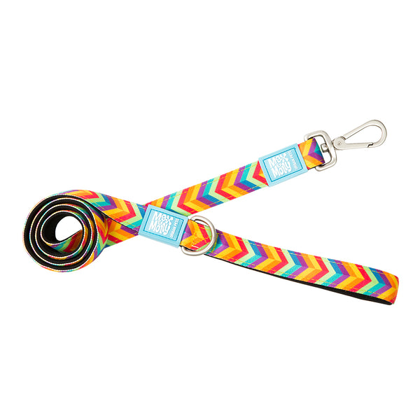 Max & Molly Original Leash Summertime