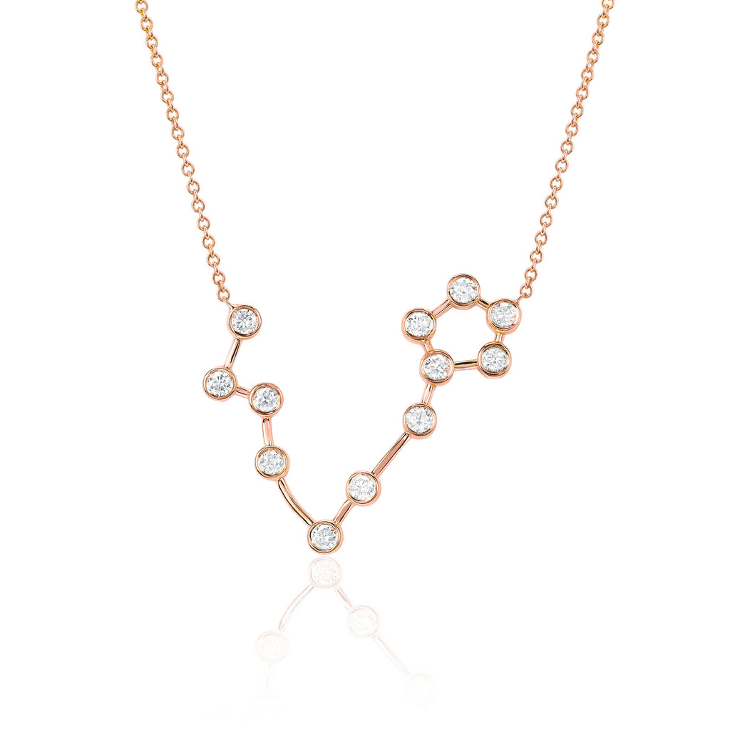 Pisces Constellation Necklace Rose Gold