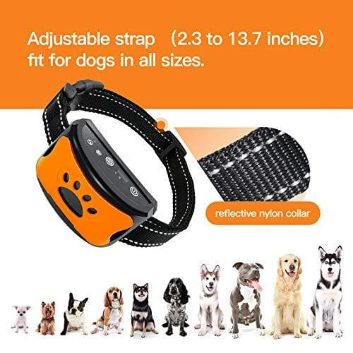 Humane No Shock Automatic Dog Bark Collar