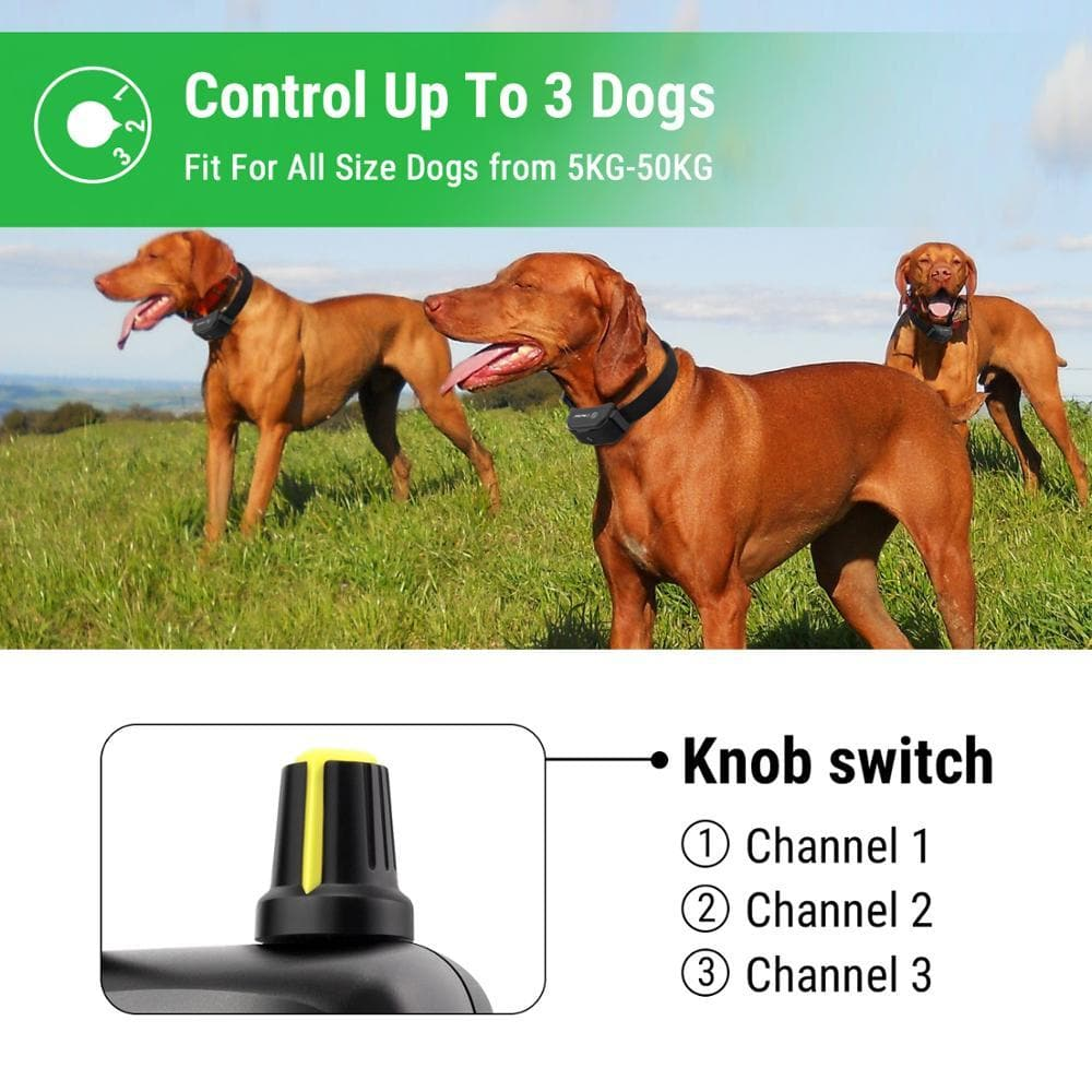 Waterproof 3,000ft Remote Training Collar for 3 Dogs