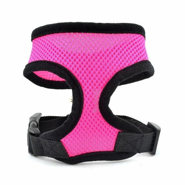 Colourful Dog Harness Vest