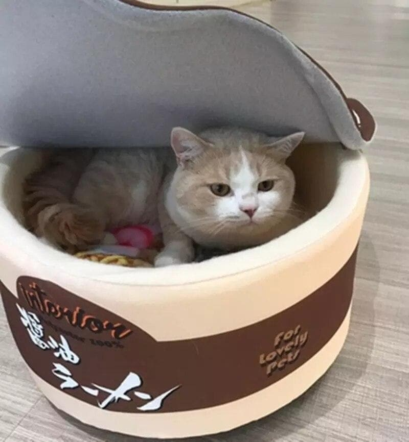 Pet Bed & Sofa Cute Instant Noodle Design