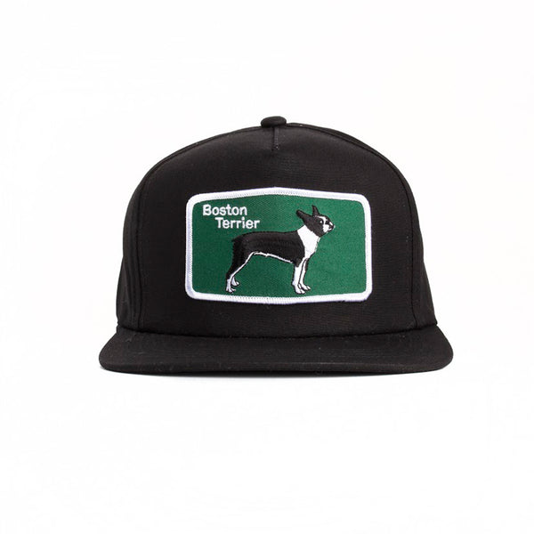 Boston Terrier Snapback
