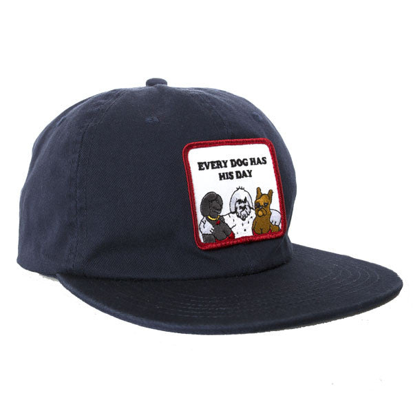 Dog Day Snapback Navy