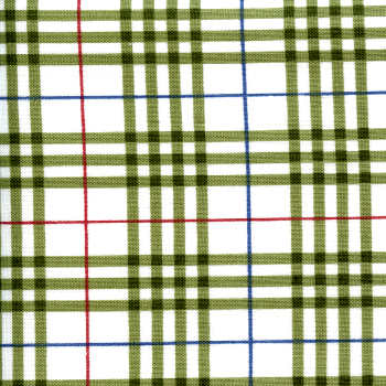 Green and White Plaid - Are We There Yet?