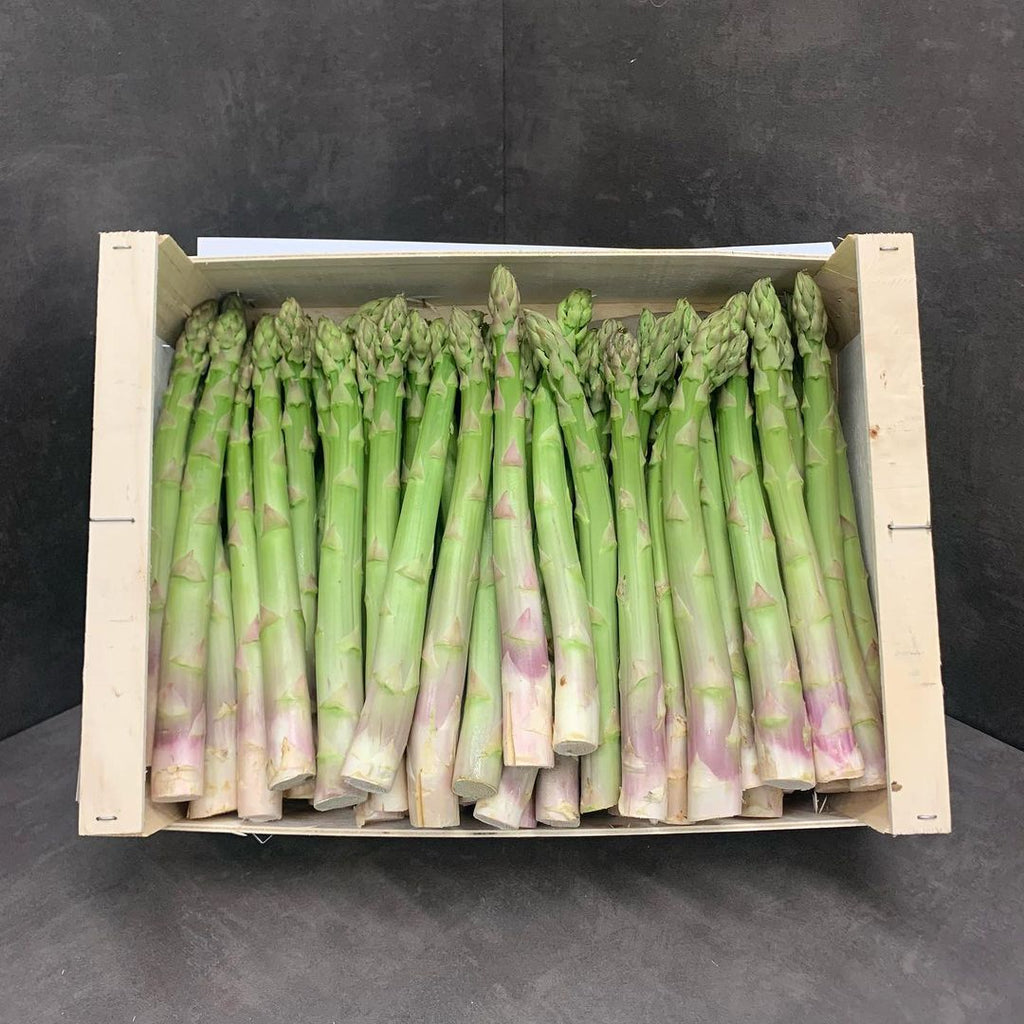 Asperges vertes de Pertuis - French Green asparagus 24+ jumbo size - 500g