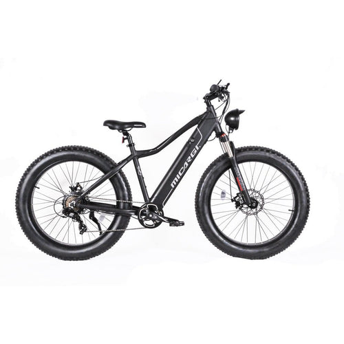 MICARGI STEED Electric Mountain Bicycle 800W Fat Tire Ebike - Ebikecentric