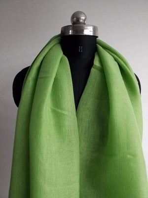 Parot Green Plain Dyed Linen Textured Fabric