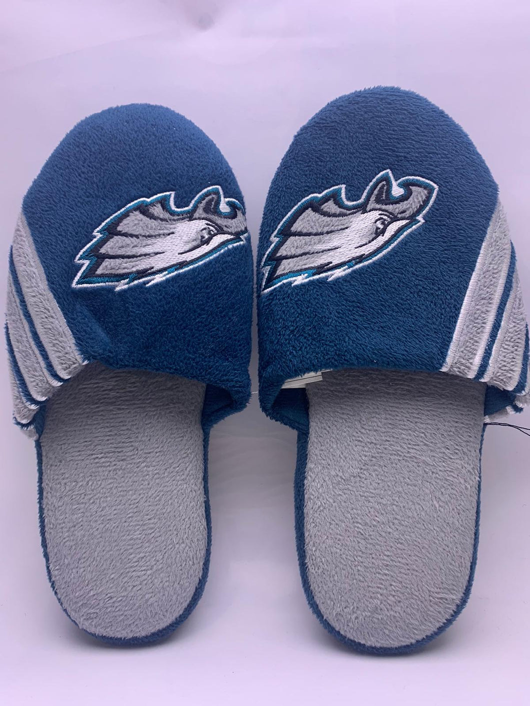 Philadephia Eagles Slippers 2