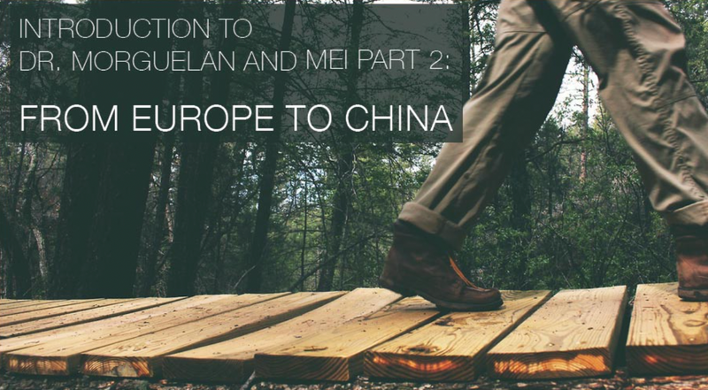 Introduction to Dr. Morguelan and MEI Part 2: From Europe to China