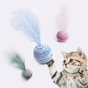 Ollie's Feather Ball Toy