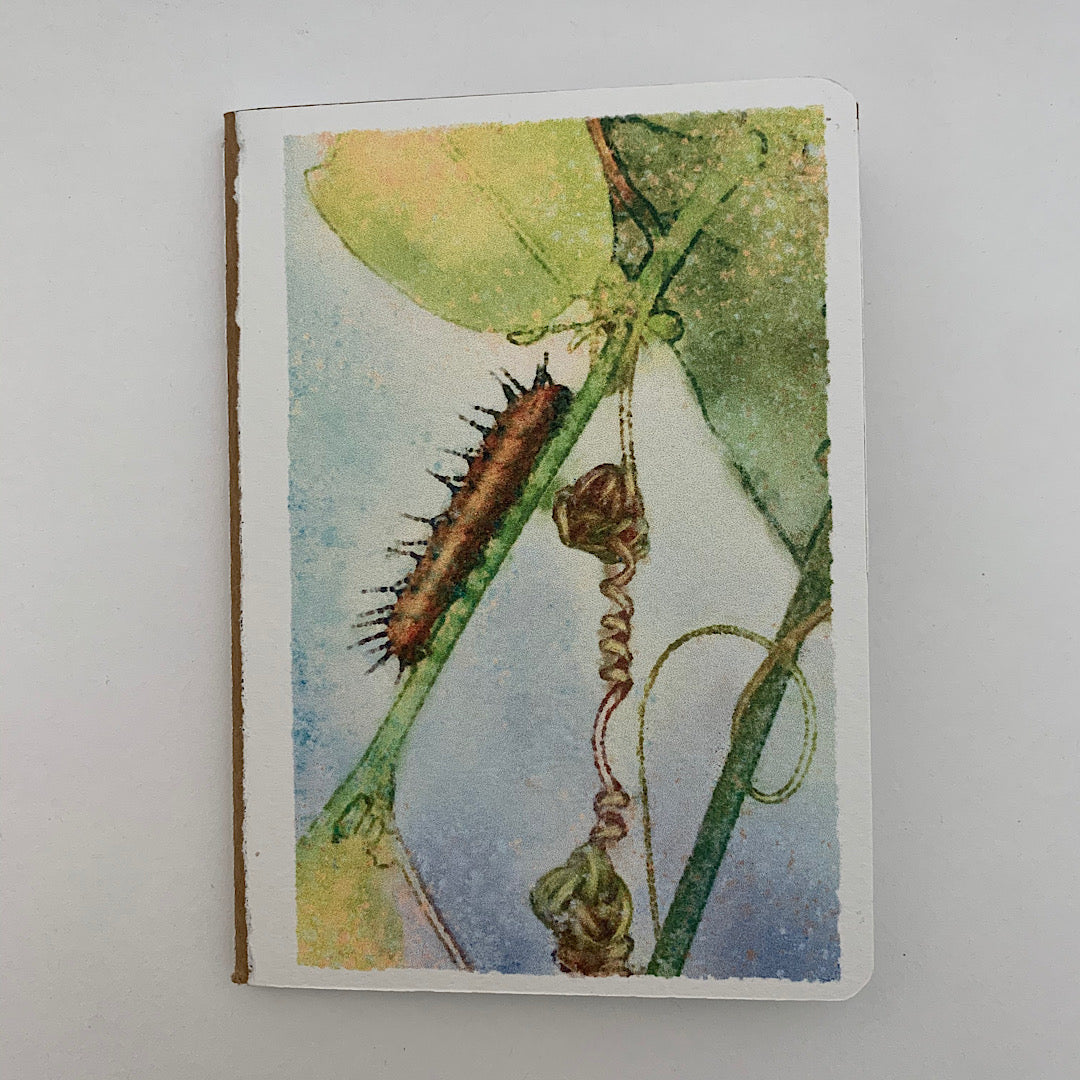 Corky Stem Passion Vine Pocket Journal