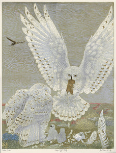 Janet Turner: Tundra Series: Snowy Owl Family