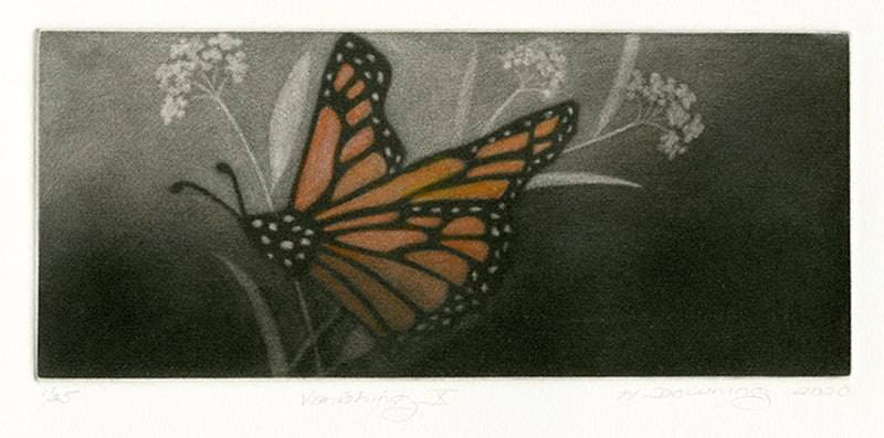 Holly Downing: Vanishing X (Monarch Butterfly)