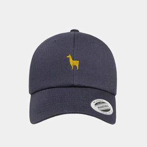 Ollie's Summer Ball Cap