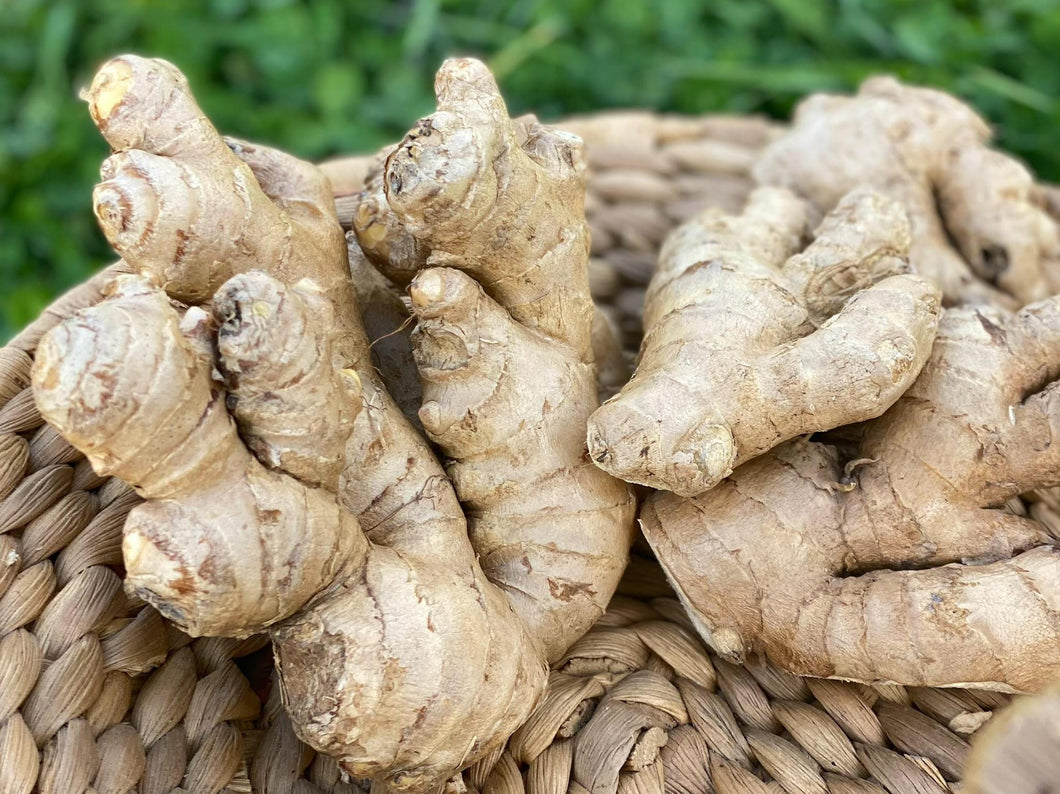 Ginger Root 1/lb