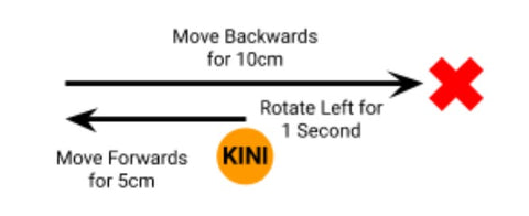 Drawing of Kini rotating left, then moving forwards for 5 cm, then moving backwards for 10 cm.