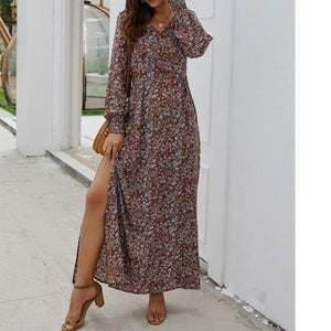 Women Pleated Long Lantern Sleeve V-Neck Floral Printing Boho Casual Long Maxi Dress