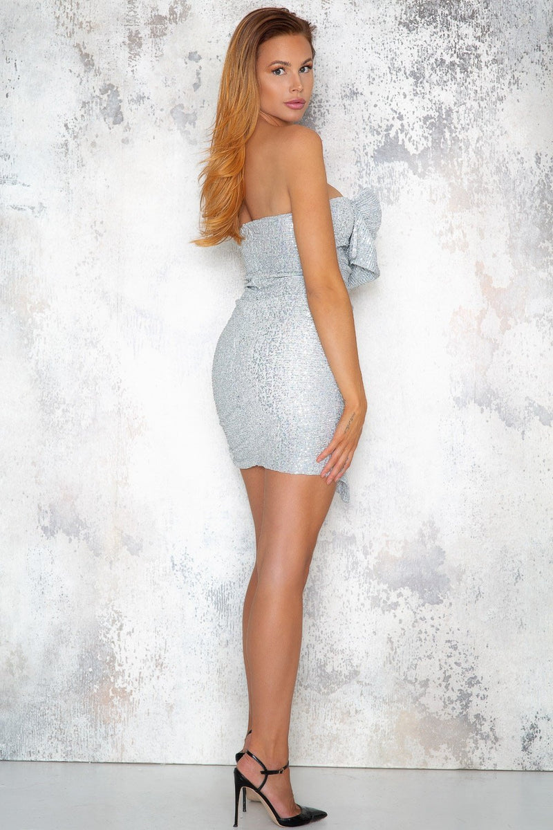 Felicity Sequin Dress - Silver - DennisMaglic.com