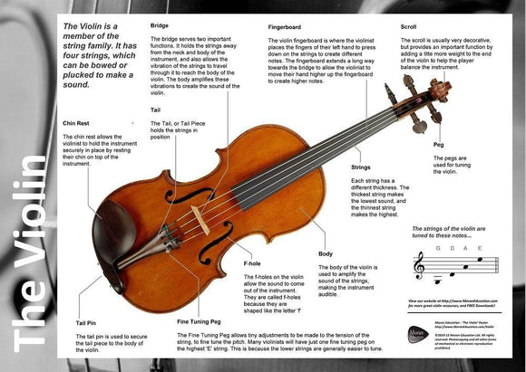 Parts of the Violin Poster - Moran Education