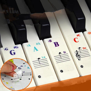 49/54/61/88 color Transparent Piano Keyboard Stickers Electronic Keyboard Key Piano Stave Note Sticker Symbol for White Keys - Moran Education