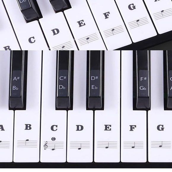 Transparent Piano Keyboard Sticker 54/61 Key Electronic Keyboard Piano Sticker 88 Key Piano Stave Note Sticker for White Keys - Moran Education