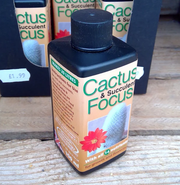 Cactus & Succulent Feed 100ml