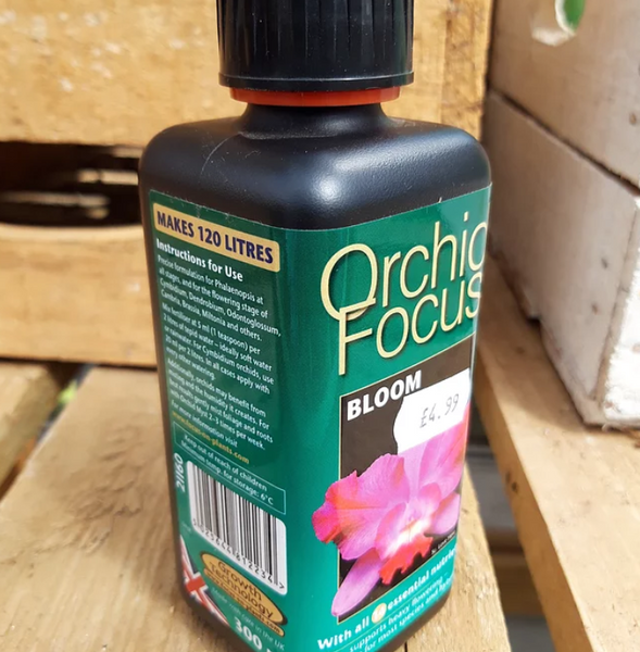 Orchid Focus Food 300ml Bloom