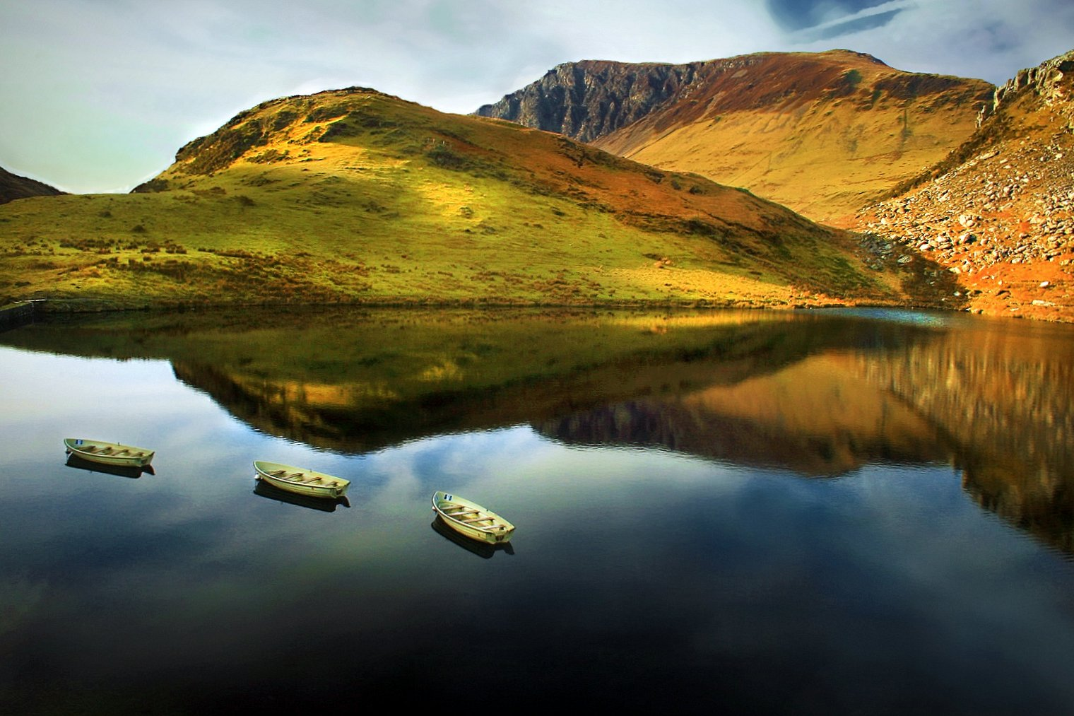 The Floating Island Of Llyn Y Dywarchen