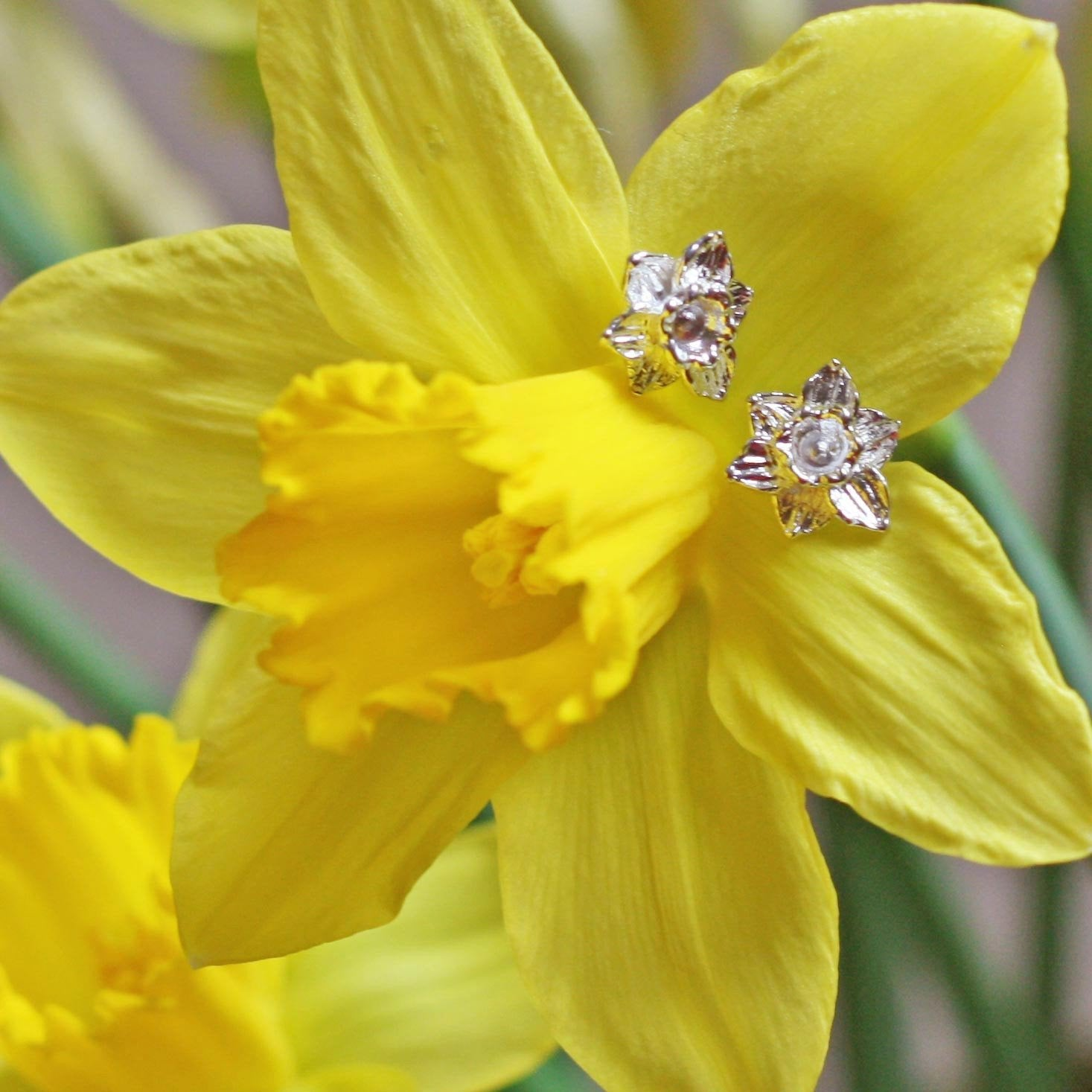Cymraeg Welsh Daffodil Sterling Silver Earrings