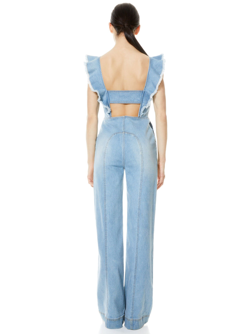 GORGEOUS OPEN BACK JUMPSUIT