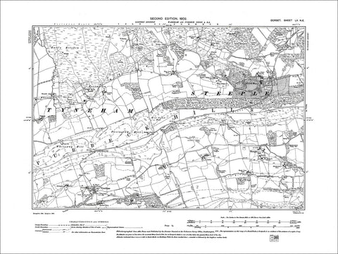 Dorset sheet 55NE - old map of Tyneham, Steeple in 1902