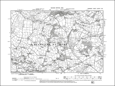 SOMERSET 087NW : old map of Buckland St Mary in 1903