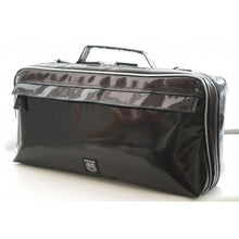 Load image into Gallery viewer, Nahok Single Clarinet case [Midnight in Paris/wf]
