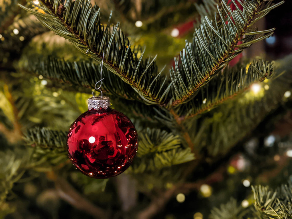 5 fun tips to make this Christmas a sustainable one