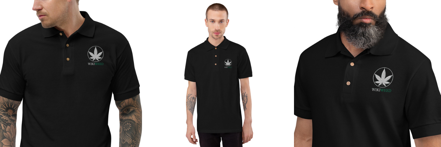 Maillot Polo Homme Wikiweed