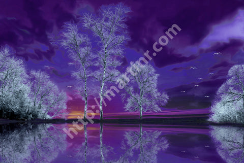 Purple Reflection