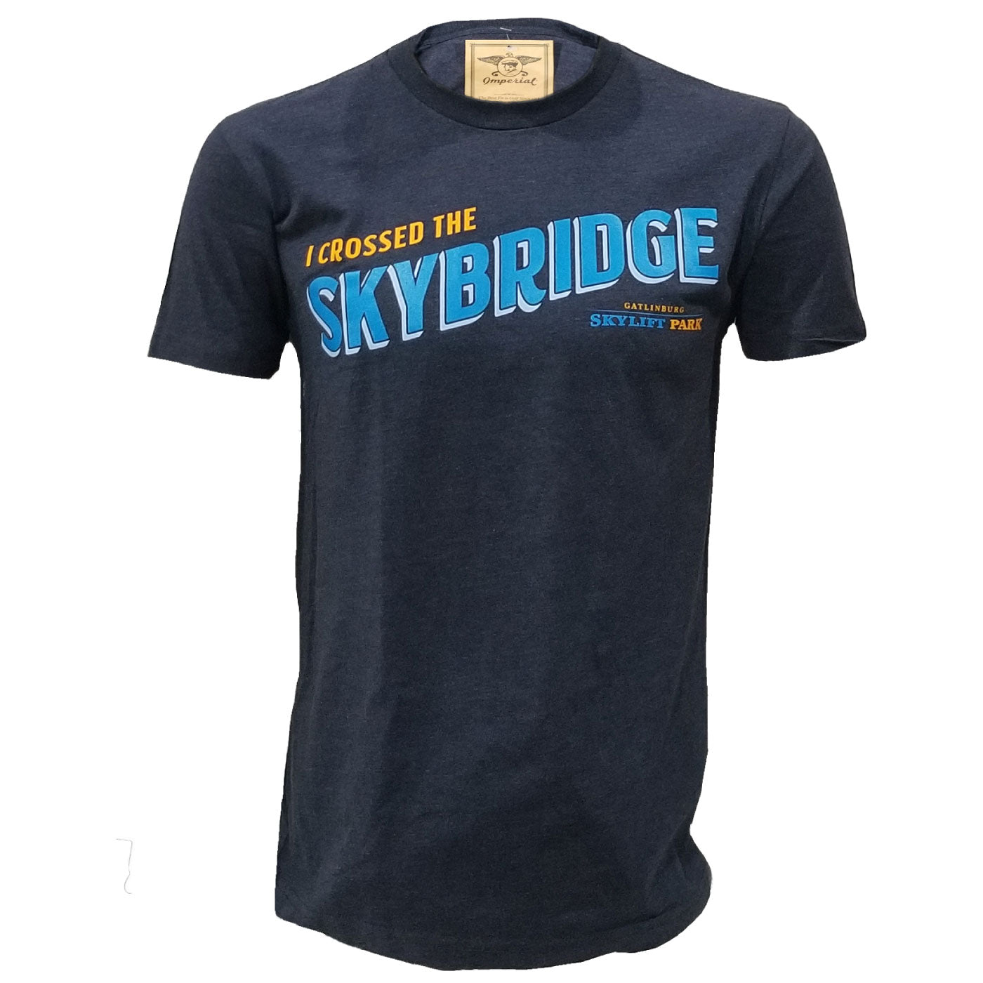 I Crossed the SkyBridge in Gatlinburg Artwork Tee