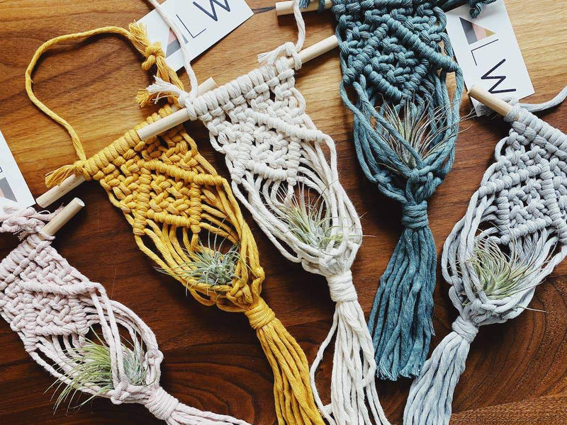 DIY Macrame Air Plant Hanger Kit - Fire + Mineral