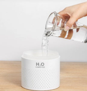 H2O Ultrasonic Humidifier - Air Diffuser