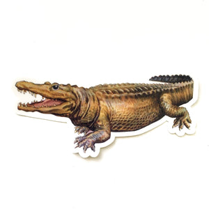 Vintage Alligator Water-Resistant Vinyl Sticker