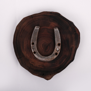 Lucky Horseshoe - Home Wall Decor