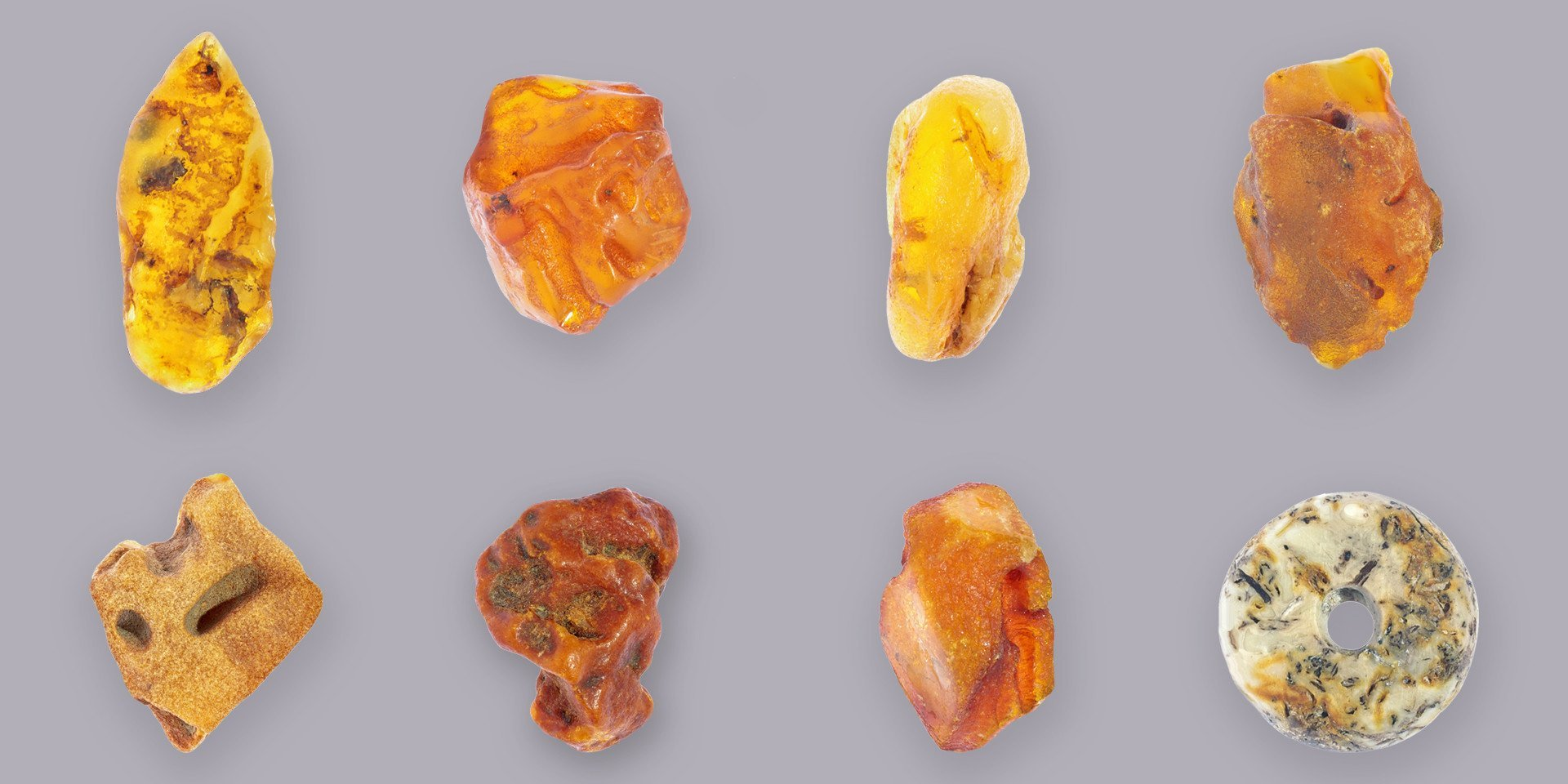 Quality Baltic Amber Specimens