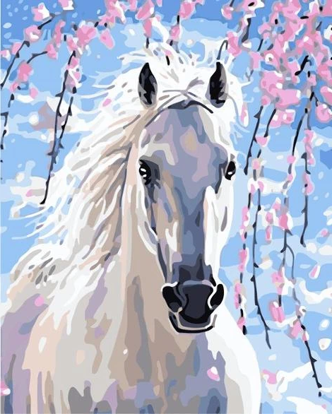 Horse Diy Paint By Numbers Kits UK AN0050