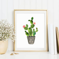 Cactus Diy Paint By Numbers Kits UK PL0126