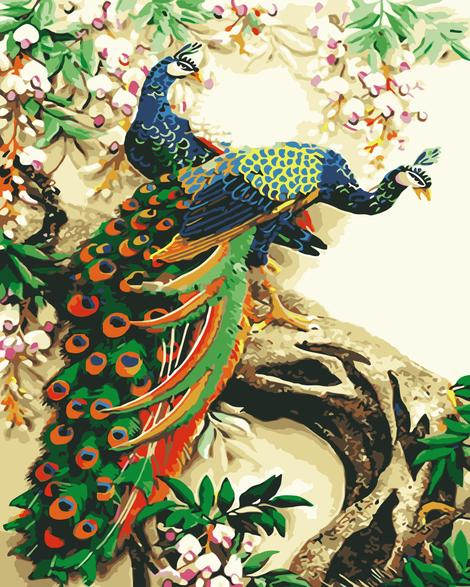 Peacock Diy Paint By Numbers Kits UK AN0129